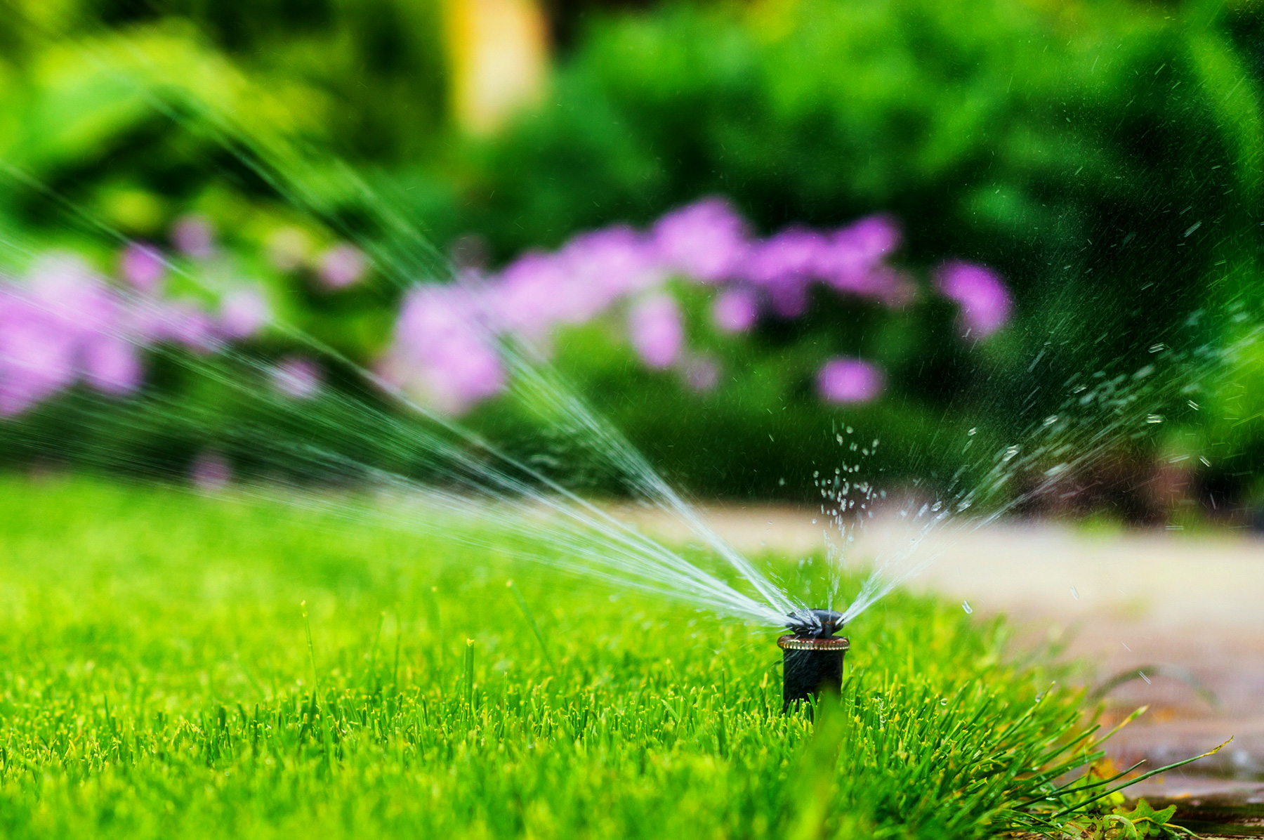 5 Common Items to Check when turning on Sprinkler System in Spring