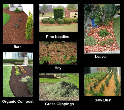What is the difference between Mulch, Compost, and Bark?